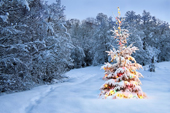 Idées de messages pour vos voeux de Noël