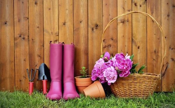 Que faire au jardin en mai