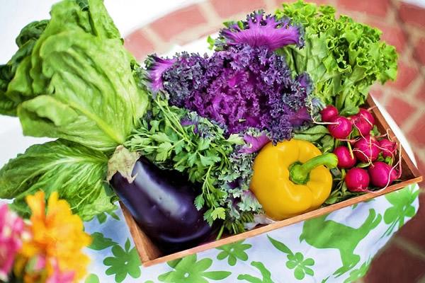 Les légumes bons pour la santé