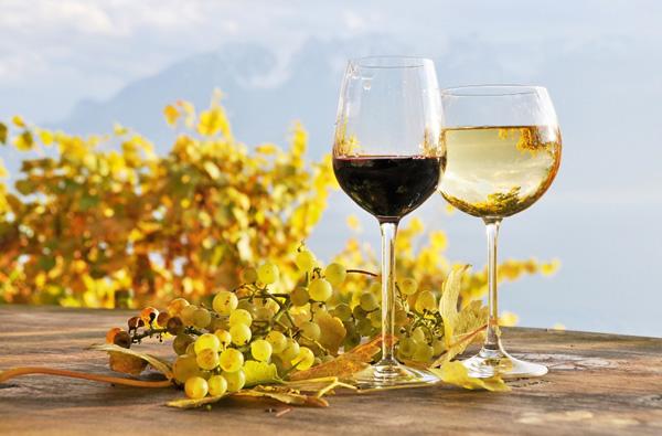 marier le vin avec les plats