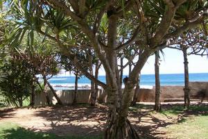 La Réunion, paradis terrestre