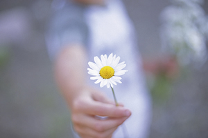 le co�t de la gentillesse