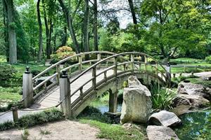 Conseils de jardinage pour r�ussir un jardin japonais