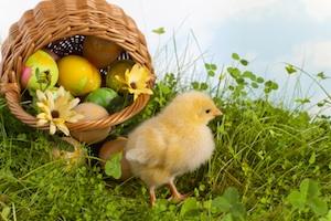 Modèles de textes pour voeux de Pâques