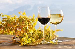 Comment choisir le vin
